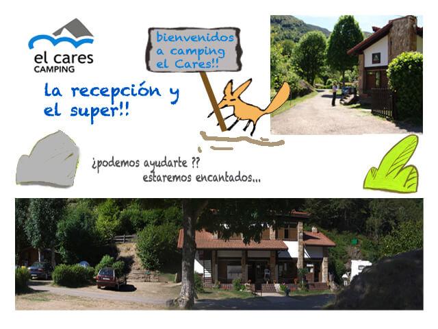 Oferta de trabajo recepción Camping el Cares