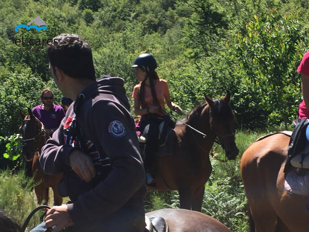 people-doing-horseback-riding-through-a-beautiful-beech-forest-in-Picos-de-Europa