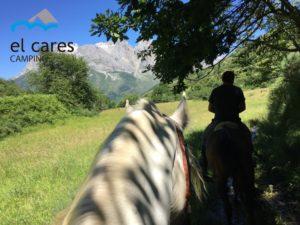 caballo_blanco_y_caballo_marrón_ruta_Parque_nacional_picos_de_europa_Valdeón_con_montañas_de_fondo_paisaje