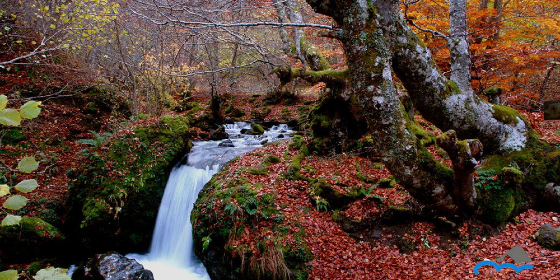 cascada del Camping el Cares en otoño