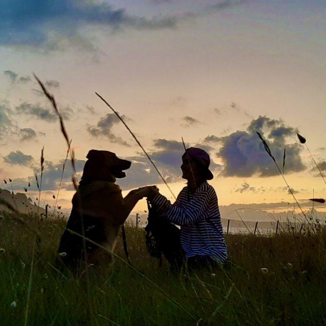 Curso senderista canino ejemplar