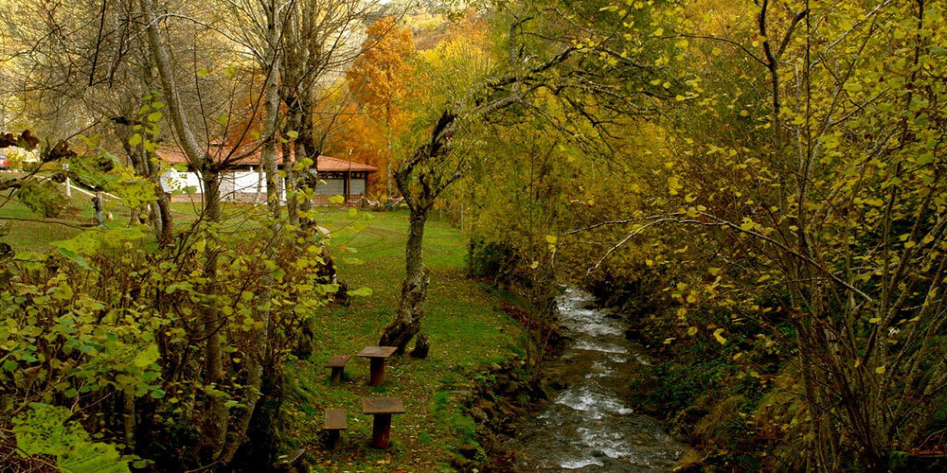 zona de picnic junto al río