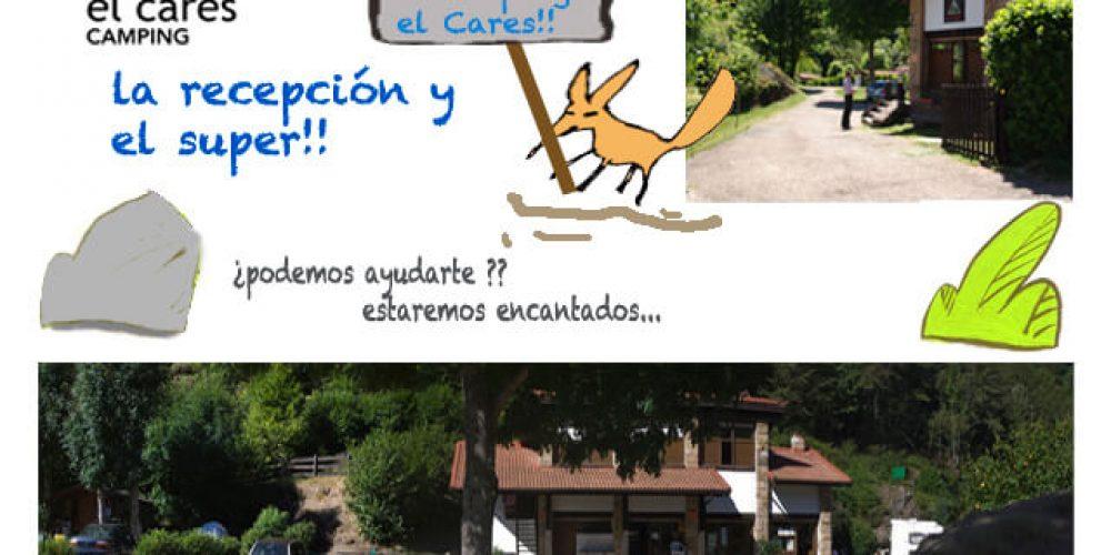 https://campingelcarespicosdeeuropa.com/wp-content/uploads/2017/02/1instalacionesrecepcioCC81nyrecepcioCC81n.jpg