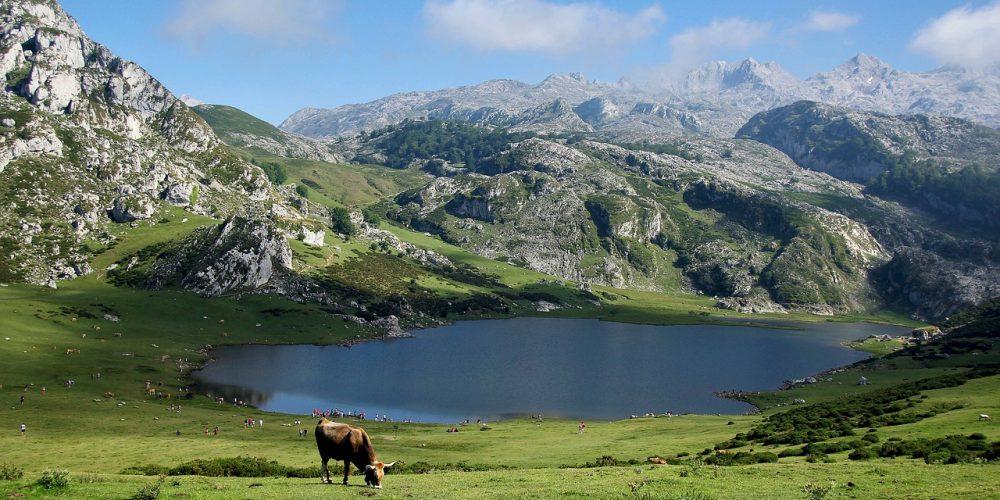 https://campingelcarespicosdeeuropa.com/wp-content/uploads/2019/02/mountains-2314624_1280.jpg
