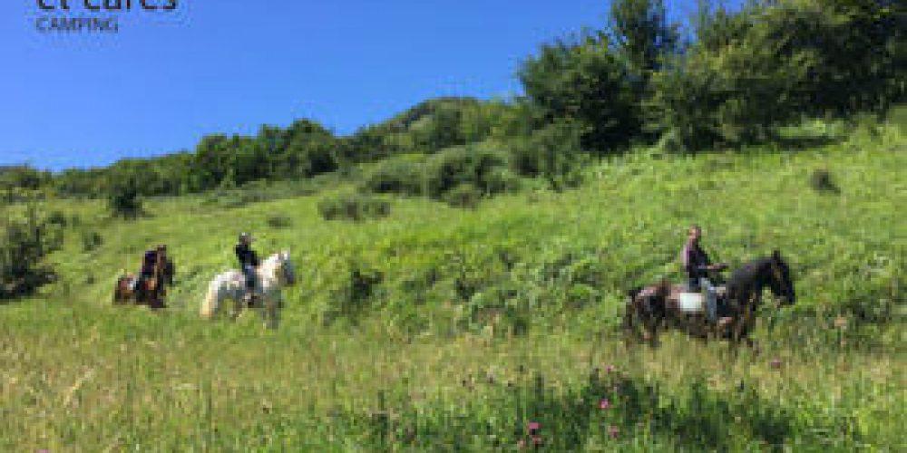 https://campingelcarespicosdeeuropa.com/wp-content/uploads/2017/07/rutas-caballo-17-IMG2857-1-e1499114697150.jpg